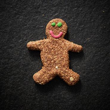 Gingerbread Man Hero